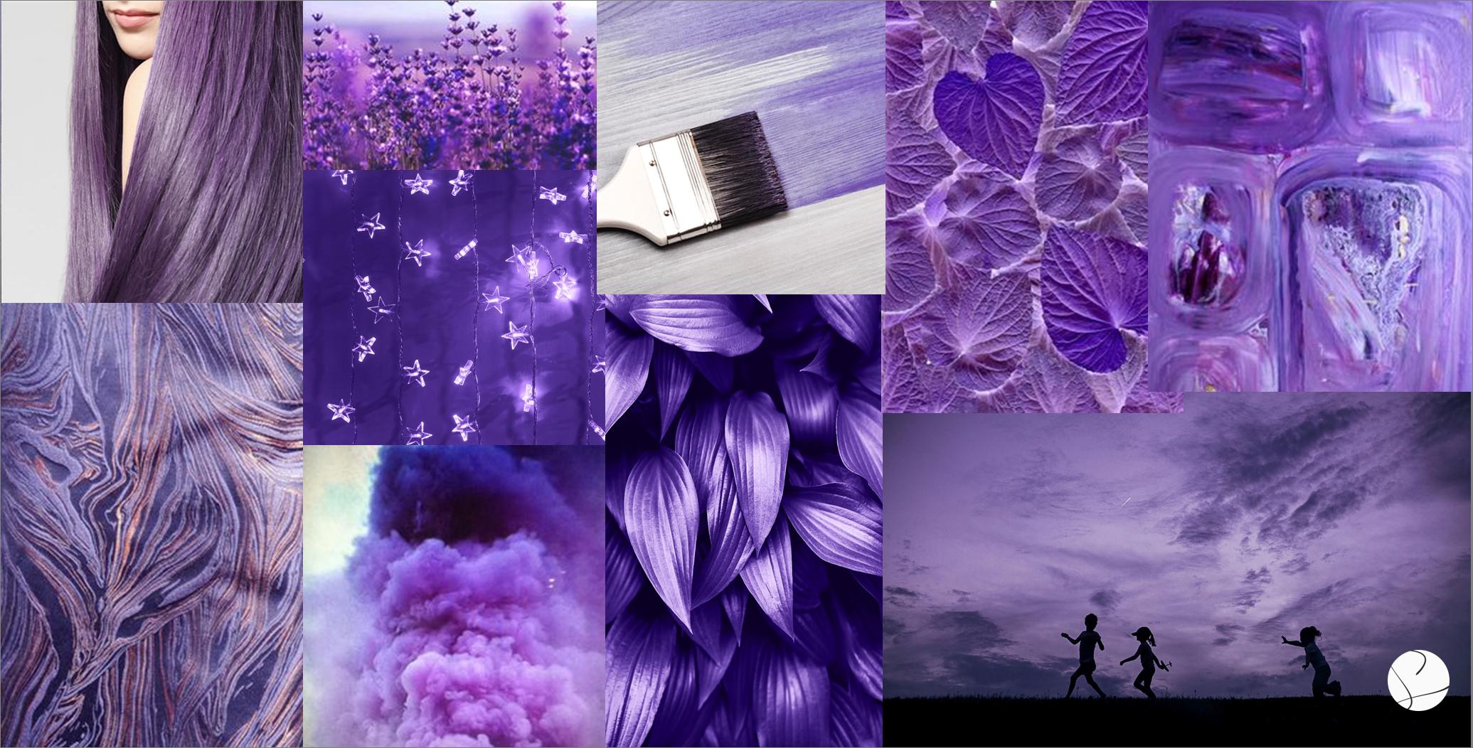 Purple Rain Purple Rain